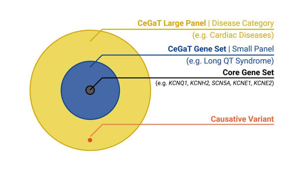 Graph displaying different levels of accuracy of gene panels