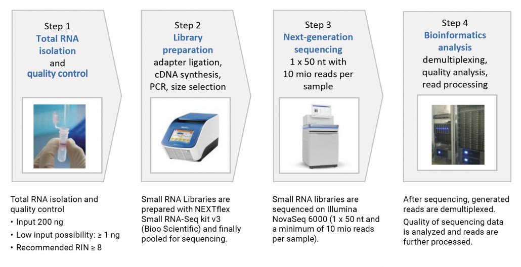 Figure 3: Experimental workflow for small RNA sequencing: From sample preparation to final data analysis.